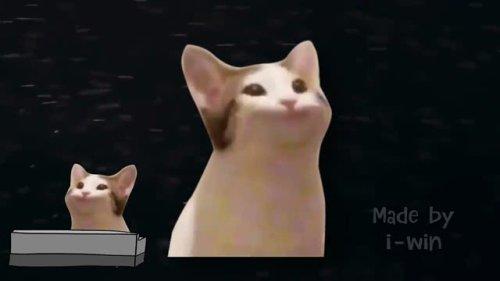 pop cat dont stop me now short